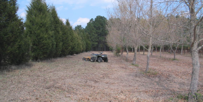 A before picture of our food plot management in Unionville, NC